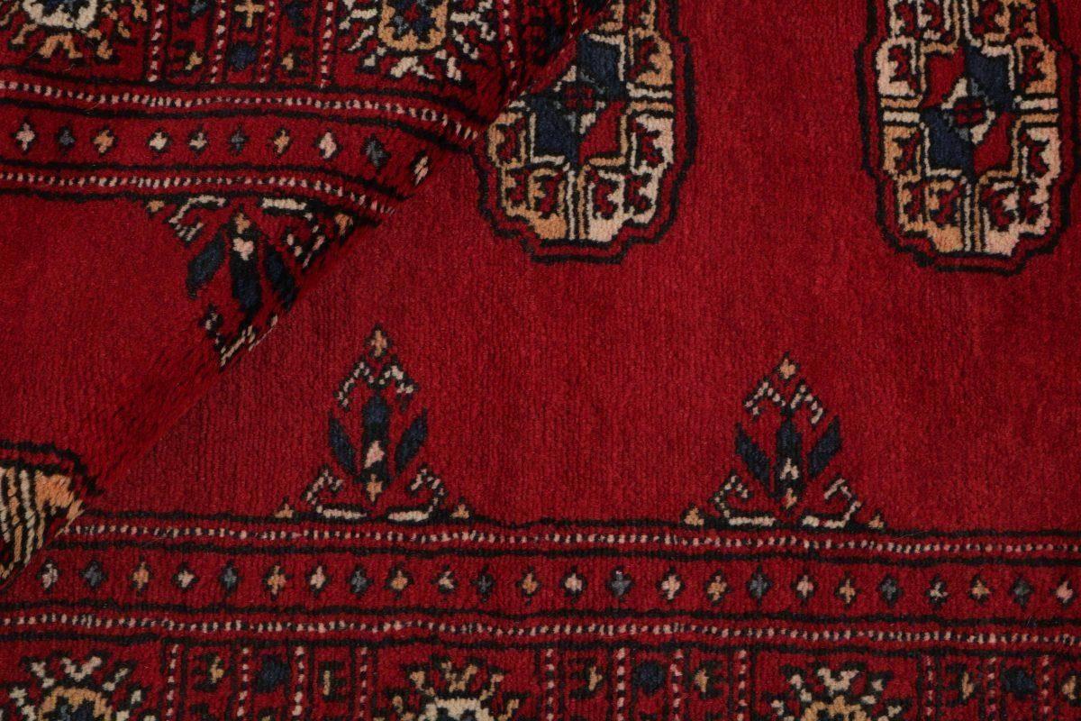 Dywan  Pakistan Bokhara 1382230 77x128cm