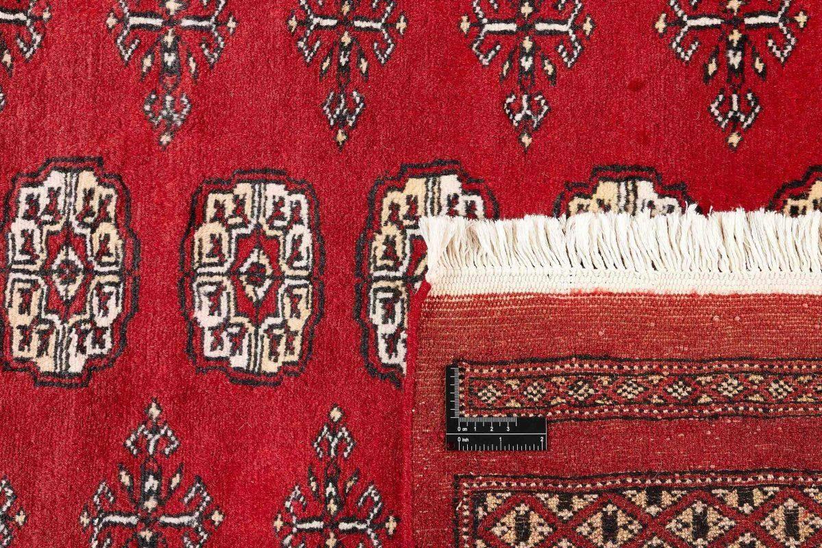 Dywan  Pakistan Bokhara 1415250 169x251cm