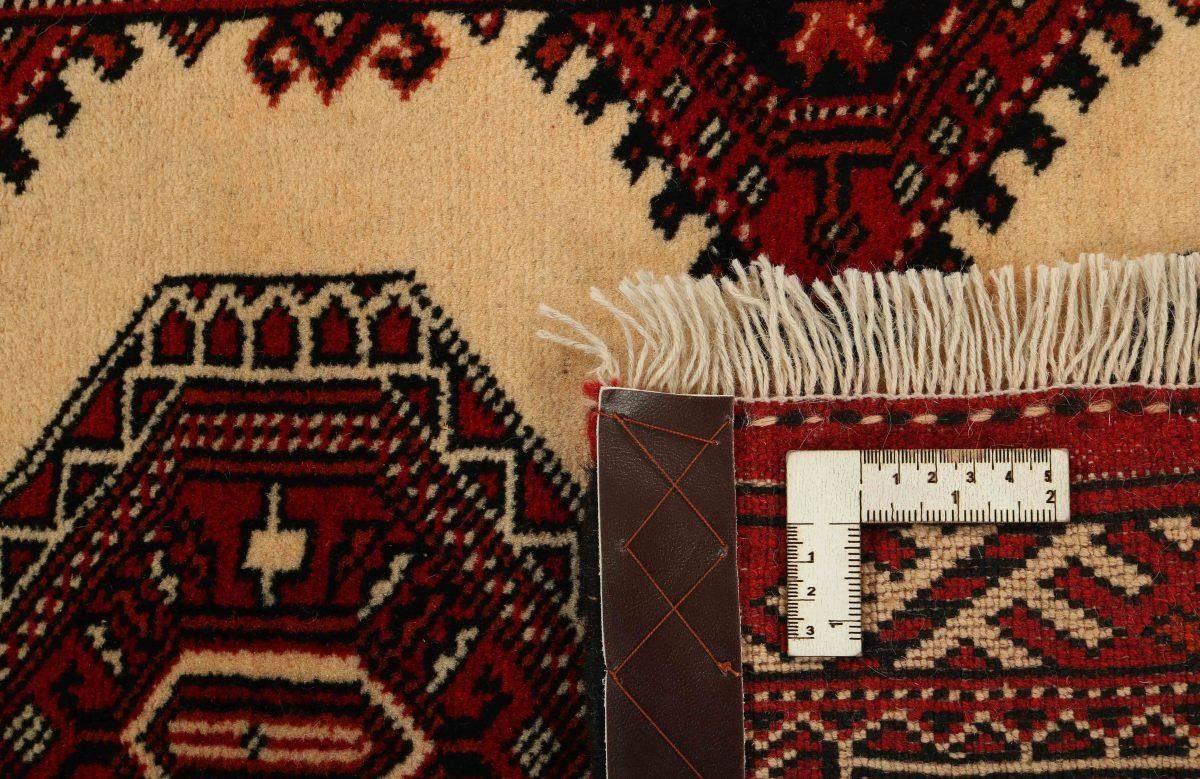 Dywan  Torkaman Fine 1421121 82x196cm
