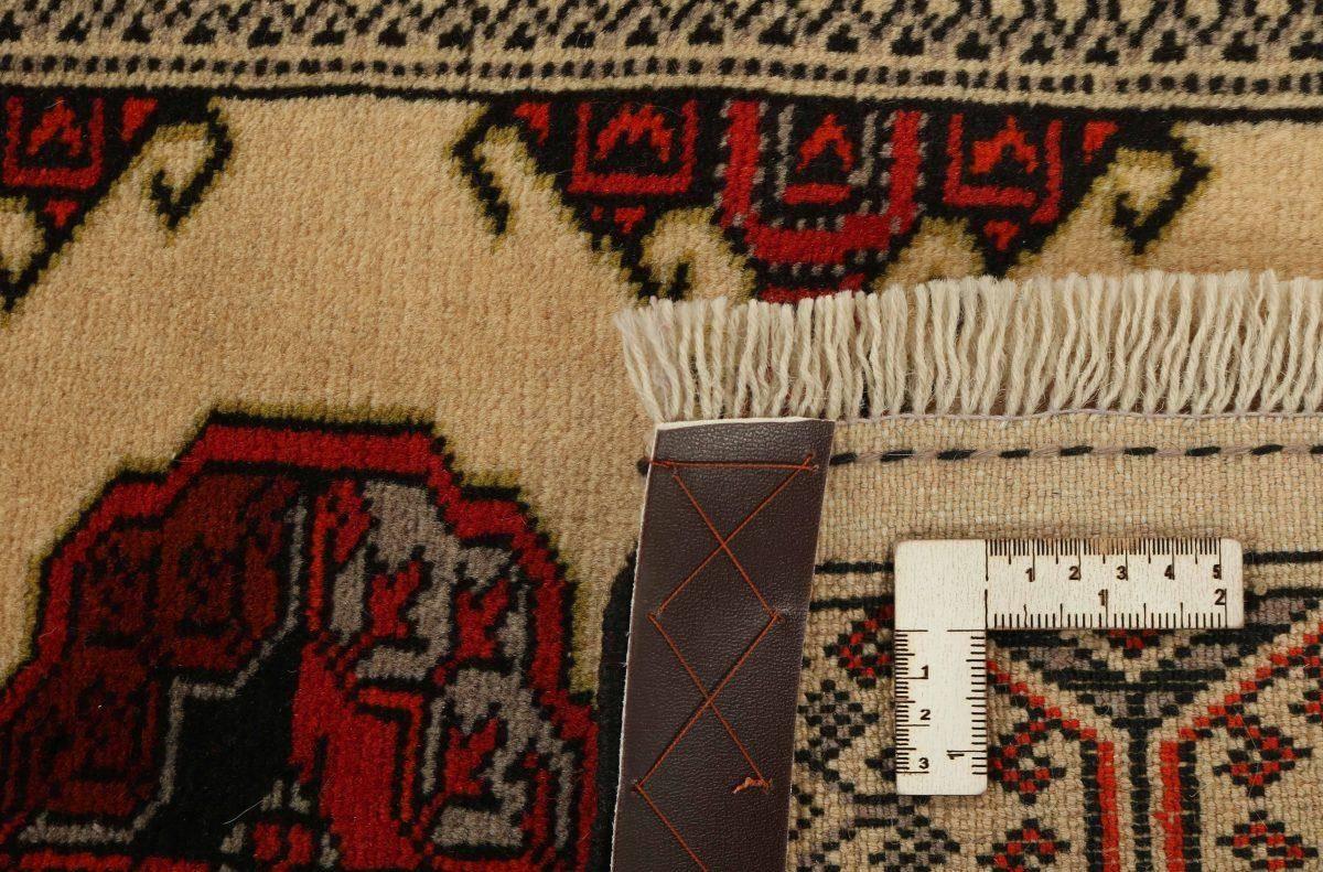 Dywan  Torkaman Fine 1421129 84x300cm